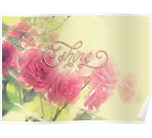 Beautiful Pink English Roses Shine Matte Sunlight Rays Poster