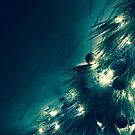 The Light of Christmas by JOSEPHMAZZUCCO