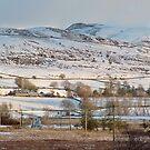 Trawsfynydd North Wales by AnnDixon