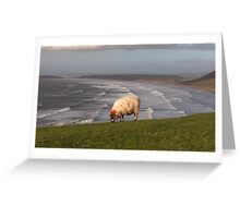A sheep at Rhossili Greeting Card