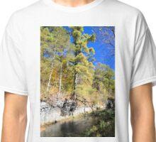 Coldwater Creek Bluffs 2 Classic T-Shirt