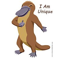 Platypus - I Am Unique Photographic Print