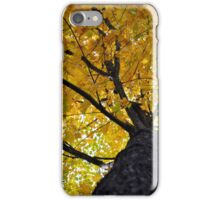Yellow Maple iPhone Case/Skin