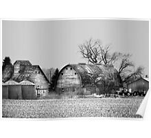 Behind The Barn BW Poster