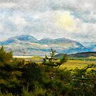 Welsh Valley by Simon Duckworth