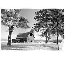 Frosty Cedar Barn BW Poster