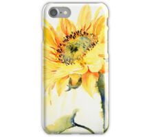 Sun Catcher iPhone Case/Skin