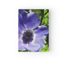 Two Blue Mauve Anemone - Close Up Windflowers Hardcover Journal