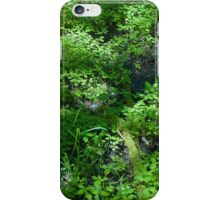 Fen Fractal iPhone Case/Skin