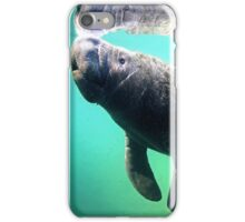 Manatee 2 iPhone Case/Skin