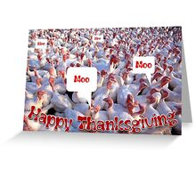 Turkey Farm Happy Thanksgiving Holiday Greeting Greeting Card