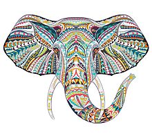 Elephant #1 by tosnos