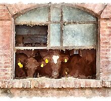 Cows at the window by Giuseppe Cocco