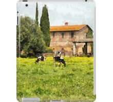 Farm and grazing cows iPad Case/Skin