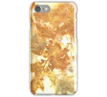 Eco Print 16_01 iPhone Case/Skin