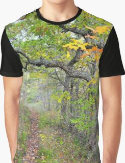 Color Walk Graphic T-Shirt