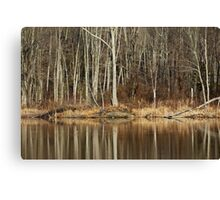 Across Skymount Pond - Autumn Browns Canvas Print
