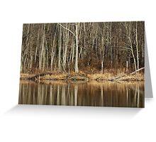 Across Skymount Pond - Autumn Browns Greeting Card