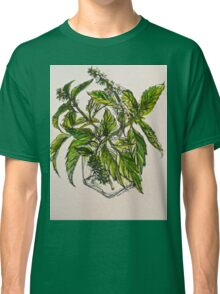 Basil. A pungent and delicious herb. Pen & wash. 21cmx28cm 2012Ⓒ Classic T-Shirt