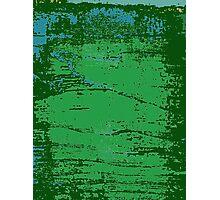 Korean Maple Wetlands Cord  Photographic Print