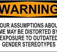 WARNING: YOUR ASSUMPTIONS ABOUT ME MAY BE DISTORTED BY EXPOSURE TO OUTDATED GENDER STEREOTYPES by Rob Price