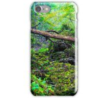 Ever Green iPhone Case/Skin