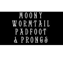 Moony Wormtail Padfoot and Prongs white Photographic Print