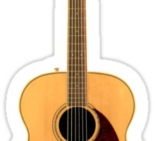 Beautiful Acoustic Guitar Sticker