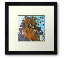 Sculpture by Nature Framed Print