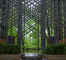 Interior, Thorncrown Chapel, Eureka Springs, Arkansas, USA by Margaret  Hyde