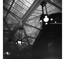 The Rookery Photographic Print