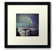 I can fly higher than you Framed Print