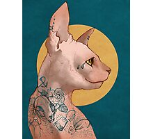 Tattoo Sphinx Cat Photographic Print