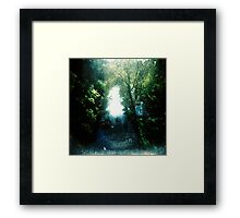 Sunlight on Merri Creek Framed Print