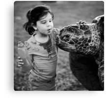Hello turtle Canvas Print