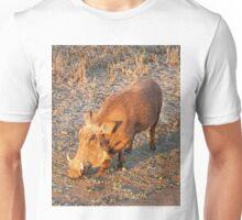 Warthog, Kruger National Park, South Africa Unisex T-Shirt