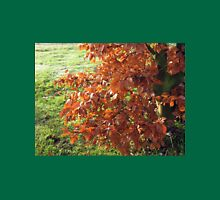 Autumn Leaves and Frosted Field in Essex Unisex T-Shirt