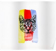 Cat with Primary Colors Poster
