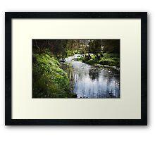 Merri creek in spring Framed Print