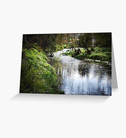 Merri creek in spring Greeting Card