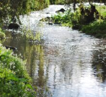 Merri creek in spring Sticker