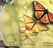 Metamorphosis Sticker