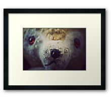 Teddy Framed Print