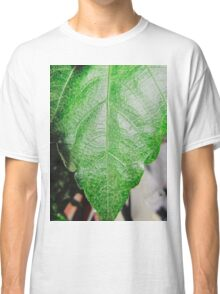 Close-up of a ordinary leaf Classic T-Shirt