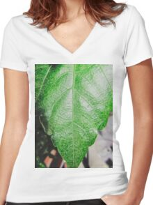 Close-up of a ordinary leaf Women's Fitted V-Neck T-Shirt
