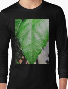 Close-up of a ordinary leaf Long Sleeve T-Shirt