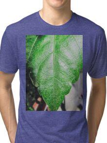 Close-up of a ordinary leaf Tri-blend T-Shirt