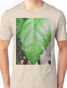Close-up of a ordinary leaf Unisex T-Shirt