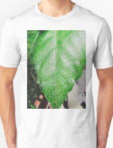 Close-up of a ordinary leaf Unisex T-Shirt