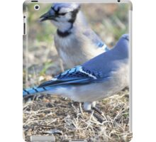 Jays iPad Case/Skin